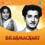 Bramhachari Songs