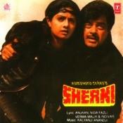 Sherni Songs