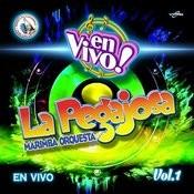 En Vivol Vol.1. Música De Guatemala Para Los Latinos (En Vivo) Songs