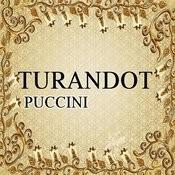 Turandot, Puccini Songs