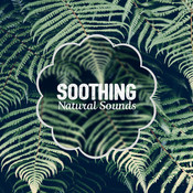 Soothing Natural Sounds Songs
