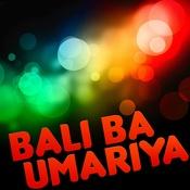 Bali Ba Umariya Song