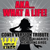 Aka... What A Life! (Cover Version Tribute To Noel Gallagher's High Flying Birds) Songs