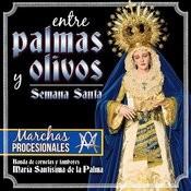 Entre Palmas Y Olivos. Semana Santa. Marchas Procesionales Songs