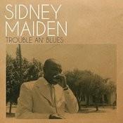 Trouble An' Blues Songs