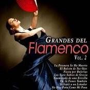 Grandes Del Flamenco, Vol. 2 Songs