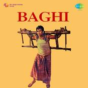 Baghi Songs