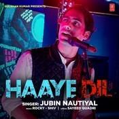 Haaye Dil Songs