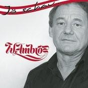 Jö schau... Wolfgang Ambros Songs