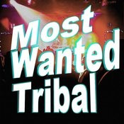 Most Wanted Tribal Songs