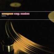Vinyl Studies Songs