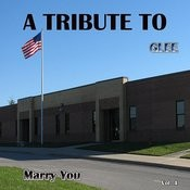 A Tribute To Glee, Vol. 4 (Marry You) Songs