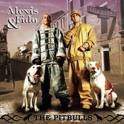 The Pitbulls Songs