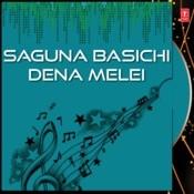 Saguna Basichi Dena Melei Songs