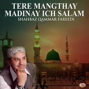 Tere Mangthay Madinay Ich Salam - Single Songs