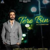 Tere Bin Songs