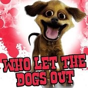 Who Let The Dogs Out - Tribute Songs