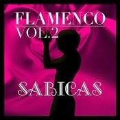 Flamenco: Sabicas Vol.2 Songs