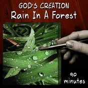 Rain In A Forest (90 Minutes) Songs