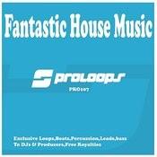 Fantastic House Music Loops Songs