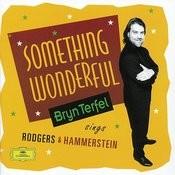 Bryn Terfel - Something Wonderful Songs