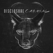 Caracal Songs