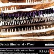 Piano Concertos By Grieg & Liszt/Busoni Songs