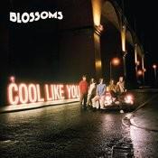 Cool Like You Songs
