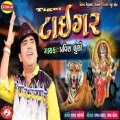 Tiger Pravin Luni Full Mp3 Song