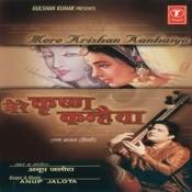 Mere Krishna Kanhaiya Songs
