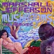 Mushrooms (The Remixes) Songs