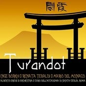 Turandot: Act III Song