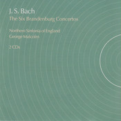 Brandenburg Concerto No.4 In G, Bwv 1049: II. Andante Song