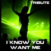 I Know You Want Me (Tribute To Pitbull) Songs