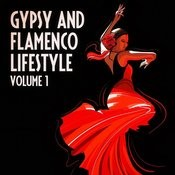 The Gypsy And Flamenco Lifestyle, Vol. 1 Songs