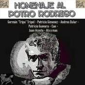 Homenaje Al Potro Rodrigo Songs
