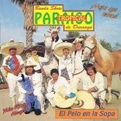 El Pelo En La Sopa Songs