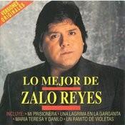 Un Ramito De Violetas (Single) Songs
