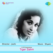 Tiger Saleem Songs