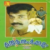 Thommanum Makkalum Songs