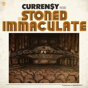 The Stoned Immaculate Songs