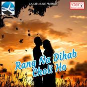 Rang Na Dihab Choli Ho Song