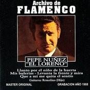 Archivo De Flamenco, Vol.19 Songs