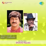 Shokilla Rayudu Songs