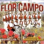 La Estrellita Songs
