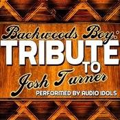Backwoods Boy: Tribute To Josh Turner Songs