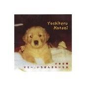 Mommy, The Most Beautiful Girl (Feat. Komaki Kotani) - Single Songs