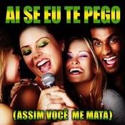 Ai Se Eu Te Pego (Assim Você Me Mata) Songs