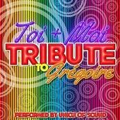 Toi + Moi: Tribute To Grégoire Songs
