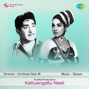 Kalliyangattu Neeli Songs